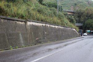 muri verdi contenimento cemento armato