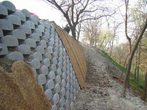 muri verdi copertura